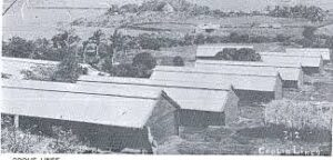 Coolie Lines for Girmitiyas in Fiji. Picture courtesy of National Archives of Fiji